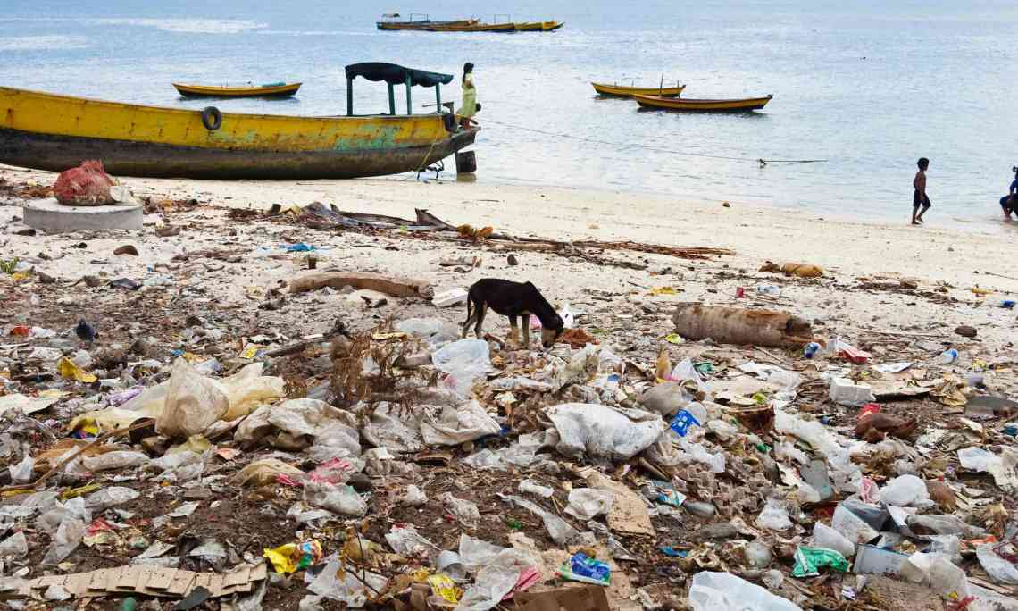 Waste on an Andaman beach